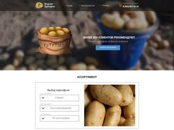 """Дизайн сайта """"Продажа картофеля"""" Иркутская область"""