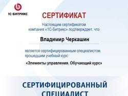 Сертификат БИТРИКС - Элементы управления