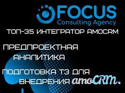 Предпроектная аналитика, подготовка ТЗ amoCRM