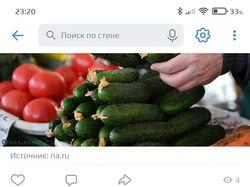 Парсер новостей ТАСС
