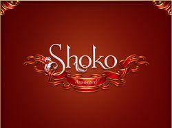«Shoko»