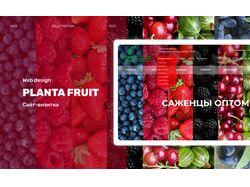 Веб-дизайн сайта-визитка для оптовой продажи