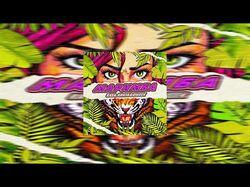 RASA, ХАНЗА & OWEEK - Маримба (VEEXIE Remix)