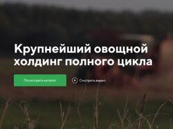 Сайт для агрохолдинга Дмитровские овощи