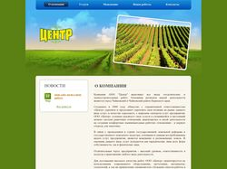 Сайт компании «Центр»