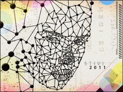 Stivi 2011