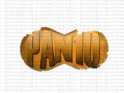 Логотип для тимы paniq