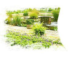 Дизайн сайта GreenJardin.ru