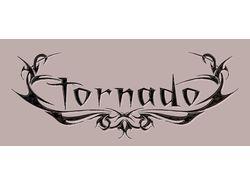 """Вариант логотипа для """"Торнадо"""""""