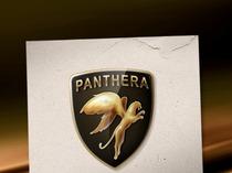 "Логотип компании ""Пантера"""