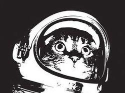 SpaceLoad.ru - Мультимедиа психоделик транс-портал