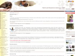 Сайт приюта ПИФ