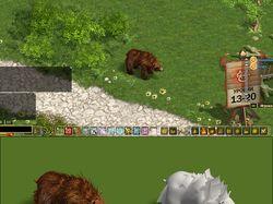 Bear (hight poly)