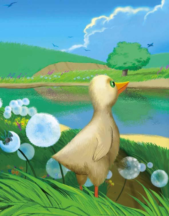 картинки утки из сказок обнинска, фото которых