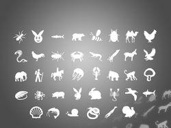 38 иконок разных животных