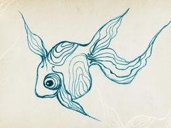Fish, draft-scetch
