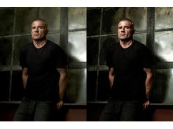 80% Led Effect Art (Dominic Purcell )