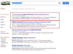 """Запрос """"озеро лотосов"""" (Google)"""