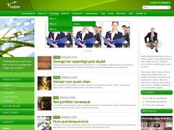 Сайт компании Vidare