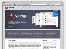 Synergy Promo Site