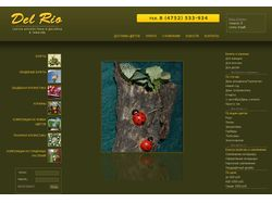 Сайт салона флористики и дизайна