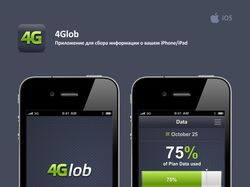 Интерфейс для 4Glob