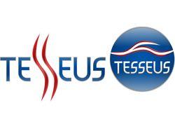 """Логотип и знак """"TESSEUS"""""""