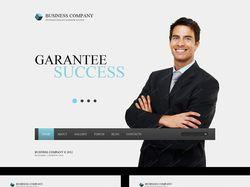 Business company (дизайн)