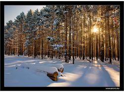 Зима фото высокого разрешения, фотобанк